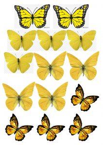 Шаблон для изготовления жёлтых бабочек из вафли