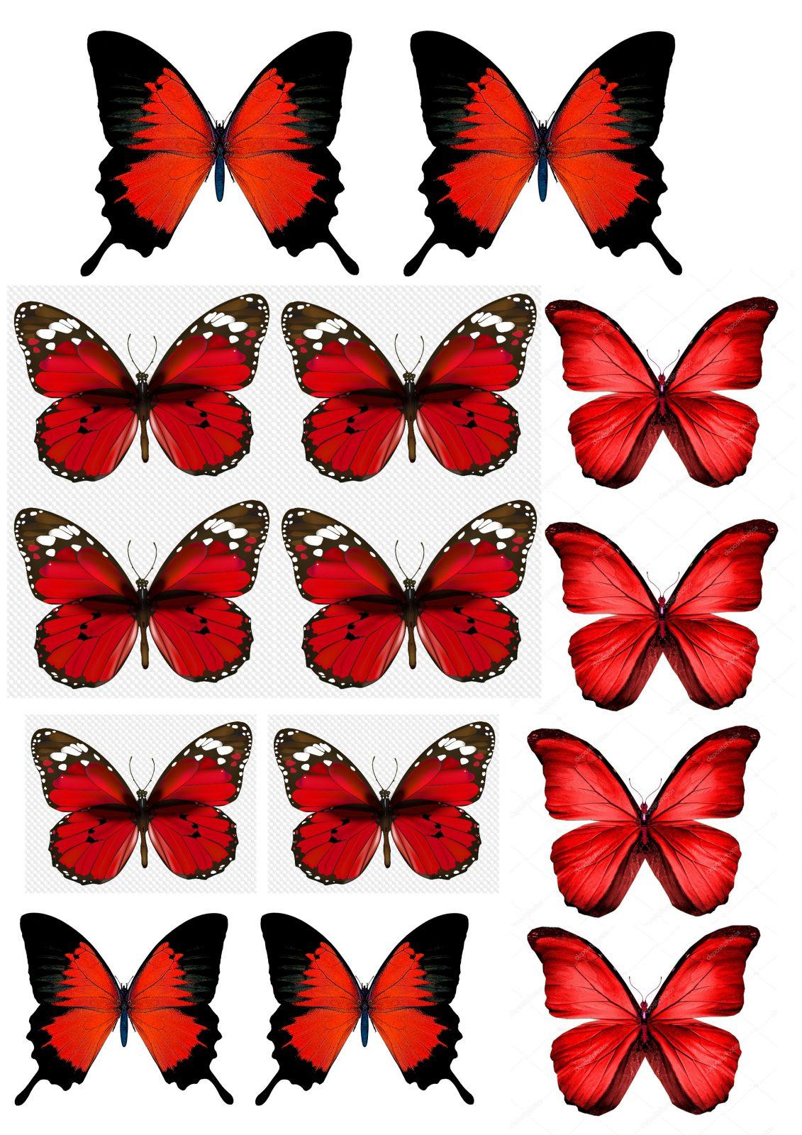 Вафельная картинка с бабочкой