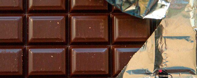 Чем горький шоколад полезен для здоровья